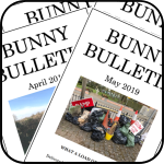 Linkk for the Bunny Bulletin